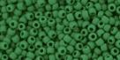 10 g TOHO Seed Beads 11/0 TR-11-0047 HF
