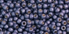 10 g TOHO Seed Beads 11/0 TR-11-PF567 F - Permanent Finish - Matte Galvanized Purple (A,C,D)