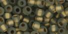 10 g TOHO Seed Beads 6/0  TR-06-0999 F