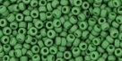 10 g TOHO Seed Beads 11/0 TR-11-2004 - Ancient (antik) Matte Evergreen