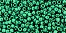 10 g TOHO Seed Beads 11/0 TR-11-PF569 - Permanent Finish - Galvanized Turquoise (A,D,C)