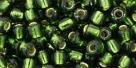 10 g TOHO Seed Beads 6/0  TR-06-0037