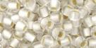 10 g TOHO Seed Beads 6/0  TR-06-0021 F
