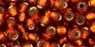 10 g TOHO Seed Beads 6/0  TR-06-2208
