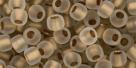 10 g TOHO Seed Beads 6/0  TR-06-0989 F